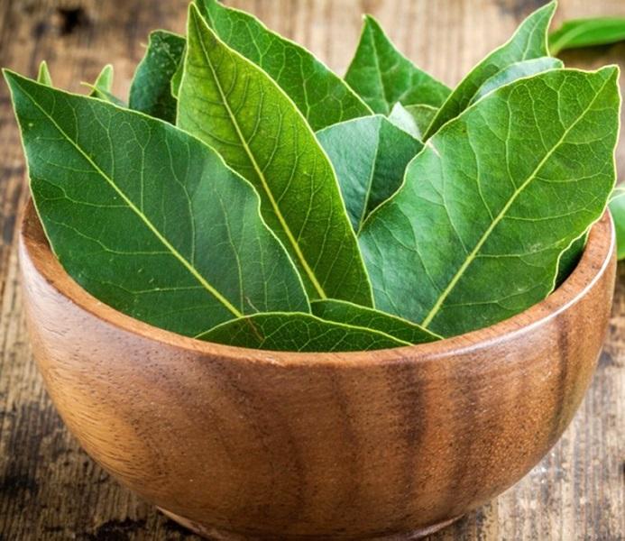 Лавровый лист - средство для борьбы с мухами